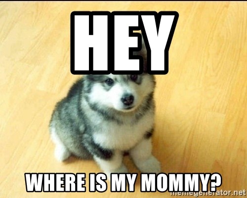 Baby Courage Wolf - Hey where is my mommy?