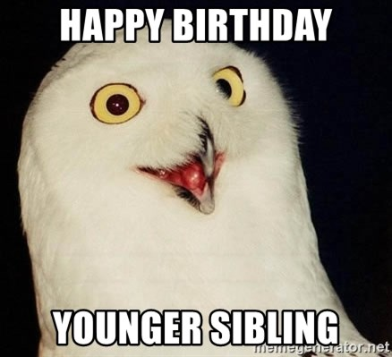O Rly Owl - Happy birthday younger sibling