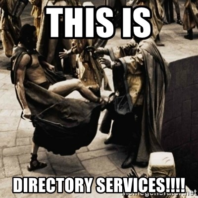 sparta kick - THIS IS DIRECTORY SERVICES!!!!
