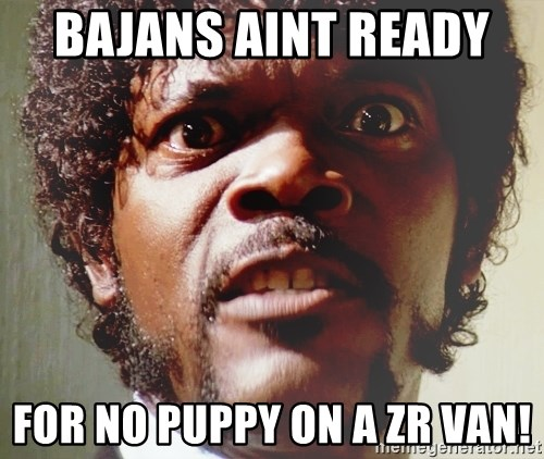 Mad Samuel L Jackson - Bajans aint ready  For no puppy on a zr VAN!