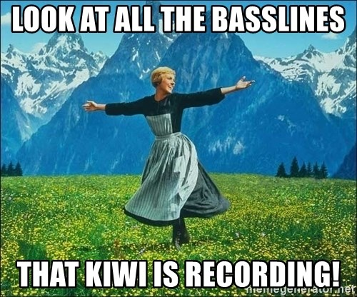 Look at all the things - LOOK AT ALL THE BASSLINES THAT KIWI IS RECORDING!