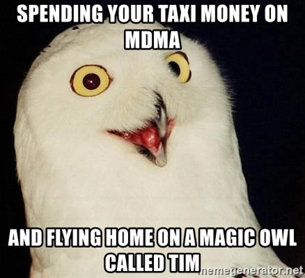 O Rly Owl - Spending your taxi money on MDMA And flyiNg home on a magic owl called TIm