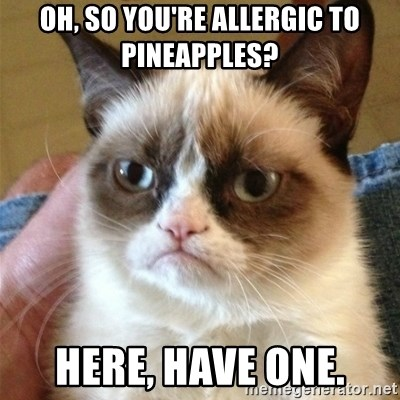 Grumpy Cat  - oh, so you're allergic to pineapples? Here, Have One.