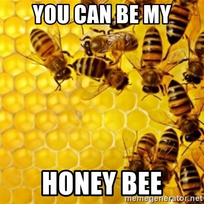 Honeybees - YOU CAN BE MY HONEY BEE