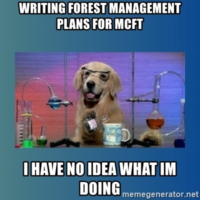 Chemistry Dog - WRITING forest MANAGEMENT plans for mcft i have no idea what im doing