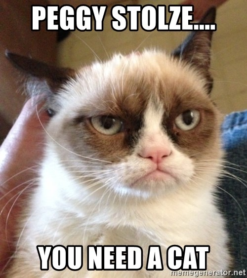 Mr angry cat - Peggy Stolze.... you need a cat