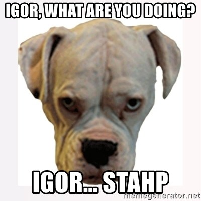 stahp guise - Igor, what are you doing? Igor... stahp
