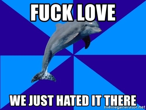 Drama Dolphin - fuck love we just hated it there