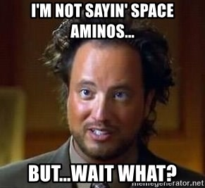 Ancient Aliens - I'm not sayin' space aminos... but...wait what?