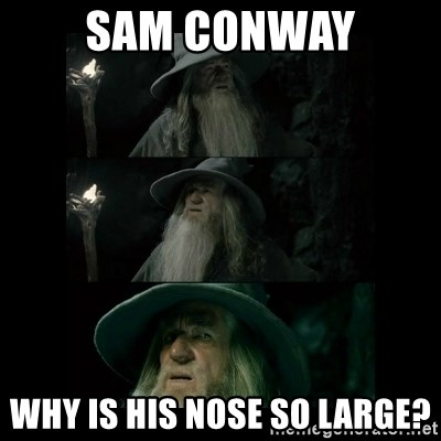 Confused Gandalf - Sam conway Why is his nose so laRge?