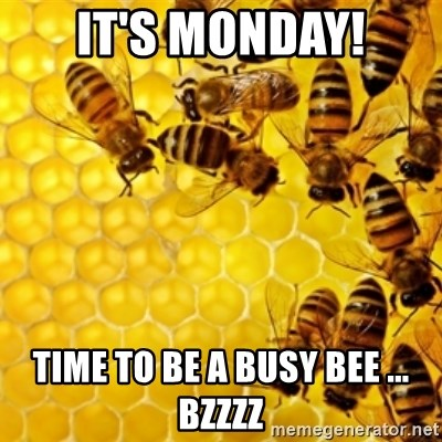 Honeybees - It's Monday! Time to be a busy bee ... bzzzz