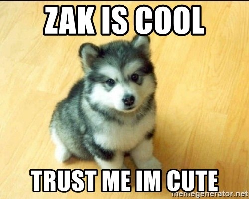 Baby Courage Wolf - Zak is cool trust me im cute