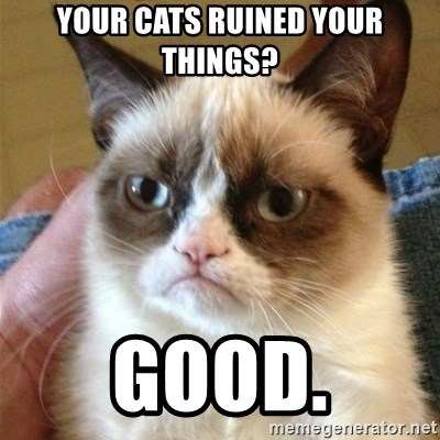 Grumpy Cat  - your cats ruined your things? good.