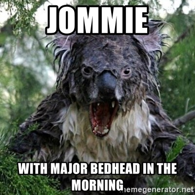 Wet Koala - jommie with major bedhead in the morning