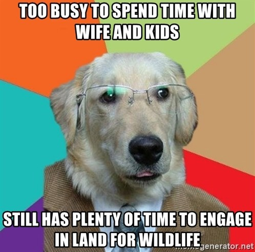 Business Dog - too busy to spend time with wife and kids still has plenty of time to engage in land for wildlife