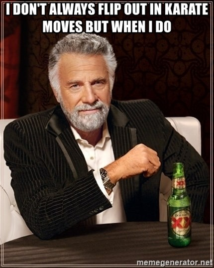 Most Interesting Man - I DON'T ALWAYS FLIP OUT IN KARATE MOVES BUT WHEN I DO