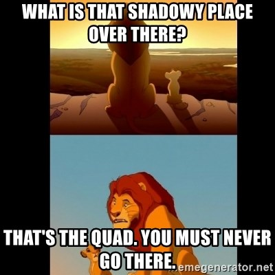 Lion King Shadowy Place - What is that shadowy place over there? That's the quad. You must never go there.