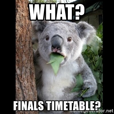 Koala can't believe it - What? finals timetable?