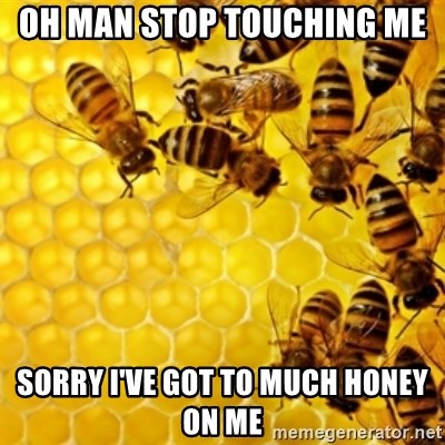 Honeybees - OH MAN STOP TOUCHING ME SORRY I'VE GOT TO MUCH HONEY ON ME