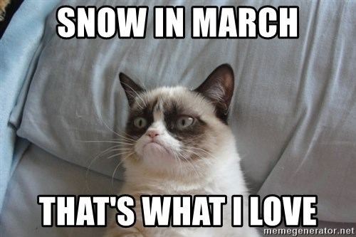Grumpy cat good - Snow in March THAT'S WHAT I LOVE