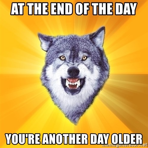 Courage Wolf - At the end of the day YOU're another day older