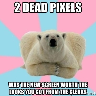Perfection Polar Bear - 2 dead pixels  was the new screen worth the looks you got from the clerks