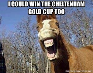 Horse - i could win the cheltenham gold cup too