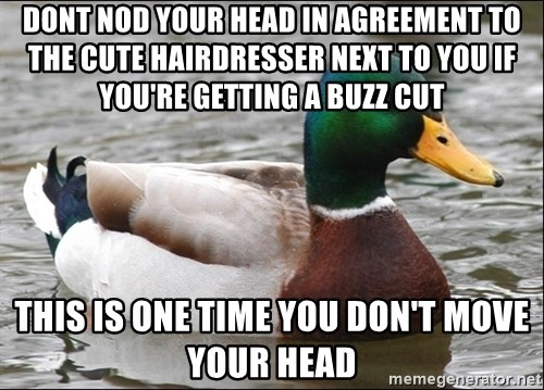 Actual Advice Mallard 1 - dONT NOD YOUR HEAD IN AGREEMENT TO THE CUTE HAIRDRESSER NEXT TO YOU IF YOU'RE GETTING A BUZZ CUT tHIS IS ONE TIME YOU DON'T MOVE YOUR HEAD