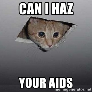 Ceiling cat - Can I Haz your aids