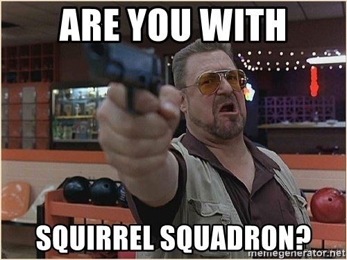 WalterGun - Are You With Squirrel Squadron?