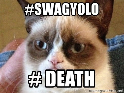 Angry Cat Meme - #swagyolo # death