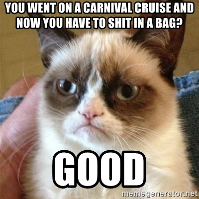 Grumpy Cat  - you went on a carnival cruise and now you have to shit in a bag? good