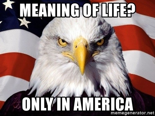 American Pride Eagle - Meaning of life? only in america