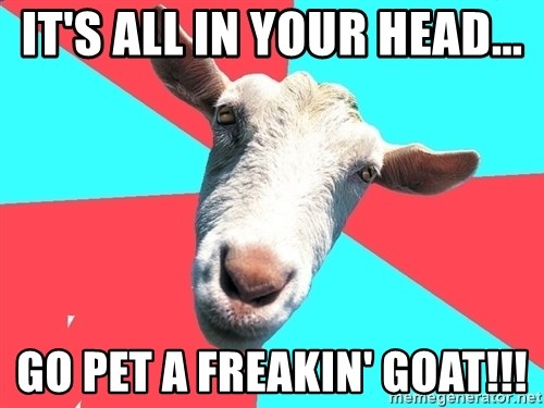 Oblivious Activist Goat - It's all in your head... Go pet a freakin' goat!!!
