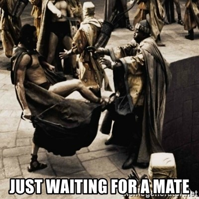 sparta kick -  just waiting for a mate