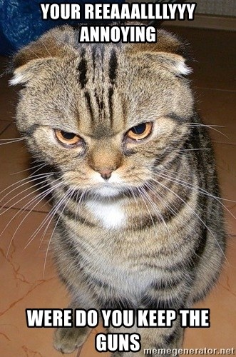 angry cat 2 - YOUR REEAAALLLLYYY ANNOYING  WERE DO YOU KEEP THE GUNS