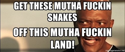 Snakes on a plane Samuel L Jackson - Get these mutha fuckin snakes off this mutha fuckin land!