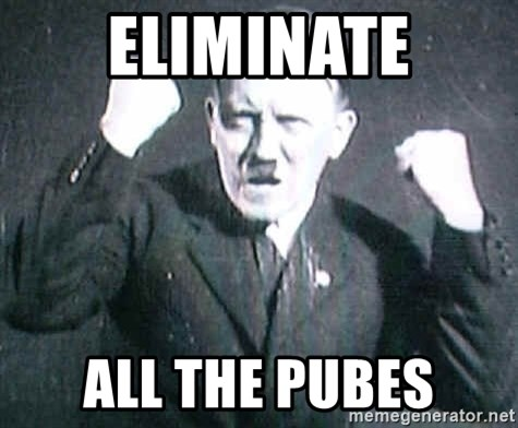 Successful Hitler - ELIMINATE ALL THE PUBES