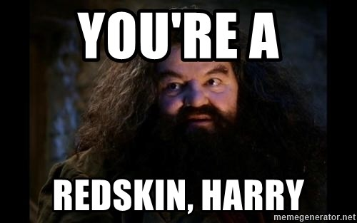 Yer A Wizard Harry Hagrid - You're a redskin, harry