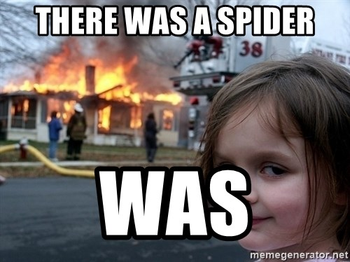 Disaster Girl - there was a spider was
