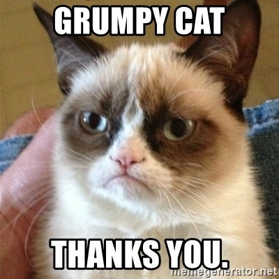 Grumpy Cat  - grumpy cat thanks you.