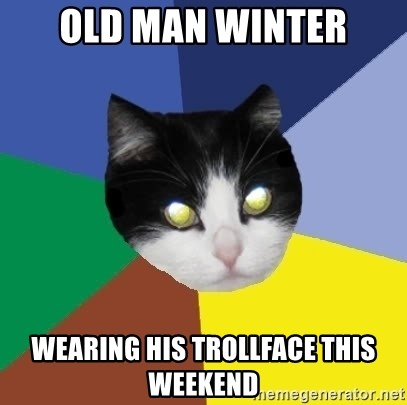 Winnipeg Cat - Old Man Winter wearing his Trollface this weekend