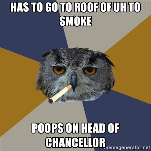 Art Student Owl - Has to Go to Roof of UH to smoke poops on head of chancellor