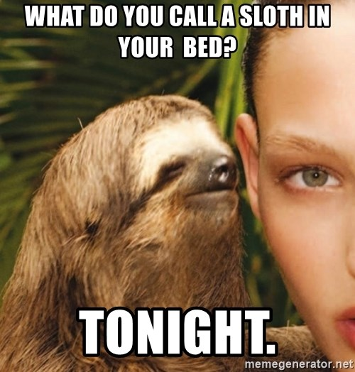 The Rape Sloth - what do you call a sloth in your  bed? tonIght.