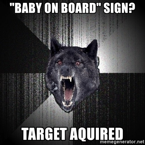 """Insanity Wolf - """"Baby on Board"""" Sign? Target aquired"""