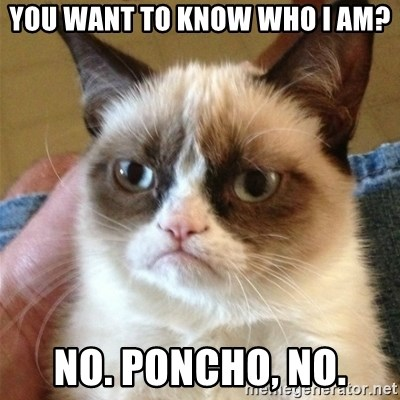 Grumpy Cat  - You want to know who i am? no. poncho, no.