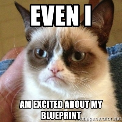 Grumpy Cat  - Even I am excited about my blueprint