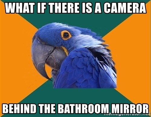 Paranoid Parrot - what if there is a camera behind the bathroom mirror