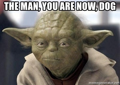 Master Yoda - the man, you are now, dog
