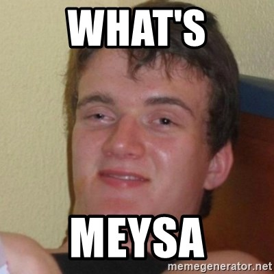 Really Stoned Guy - WHAT'S MEYSA